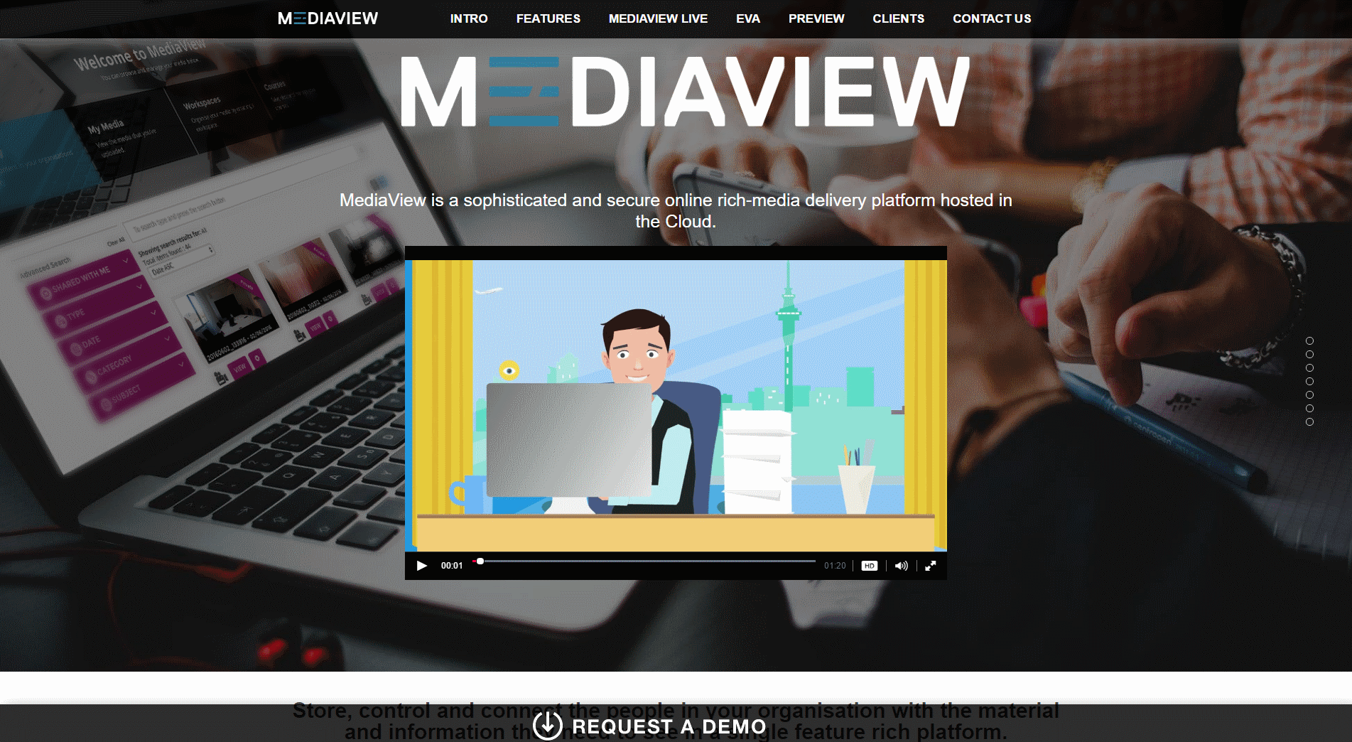 Our client MediaView.co.nz website